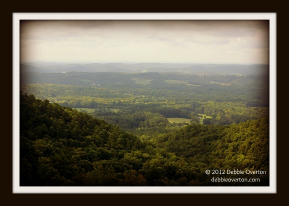 © 2012 Debbie Overton Mount Alto