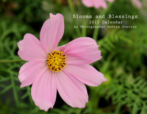 Blooms and Blessings 2015 Calendar